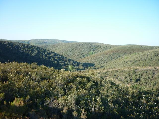 Sierra de la Culebra (Zamora).