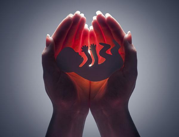 Resultado de imagen de aborto