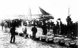 Finales del siglo XIX. Subasta del pescado en la playa de Torrevieja a la salida del sol. / Foto: A. Darblade - Colección de Fco. Sala