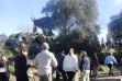 Participantes en la ruta llegando a la ermita del Berrocal. :: HOY
